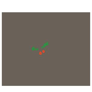 クリスマスメッセージのイラスト