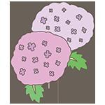 紫陽花のアイキャッチ