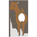 鹿のアイキャッチ