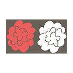 紅白の花のアイキャッチ