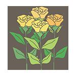 黄色いバラのイラスト