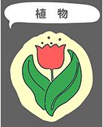 フリー素材 植物のイラスト