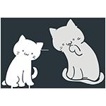 白とグレーの猫のアイキャッチ