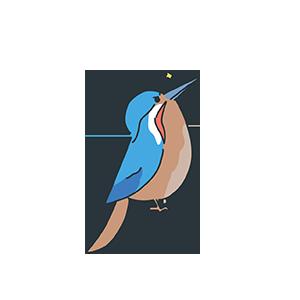 キリッとしている鳥のイラスト