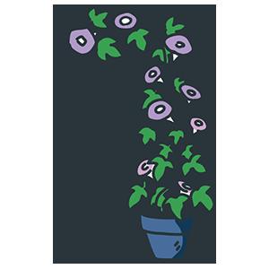 すくすく育った紫陽花のイラスト