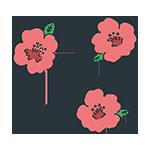 ピンクの花のアイキャッチ