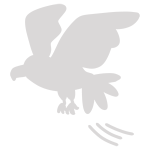 二鷹のイラスト